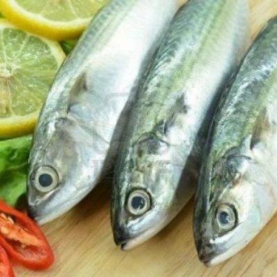 Trong cá chứa hàm lượng cao các chất dinh dưỡng