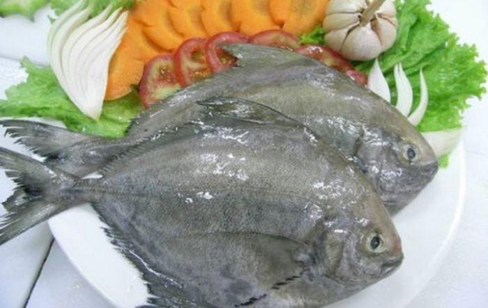 Loại cá này là đặc sản hàng đầu được rất nhiều gia đình Việt yêu thích