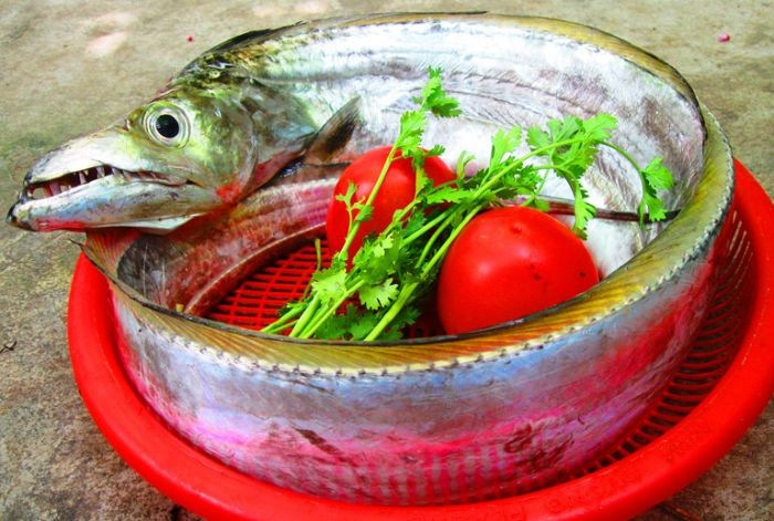 Cá đao có thành phần chứa nhiều vitamin và khoáng chất