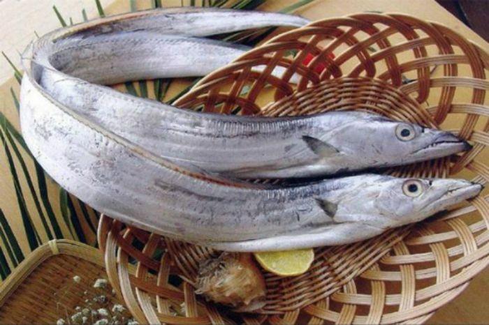 Với hàm lượng dinh dưỡng cao, loại cá mang đến rất nhiều công dụng đối với sức khỏe