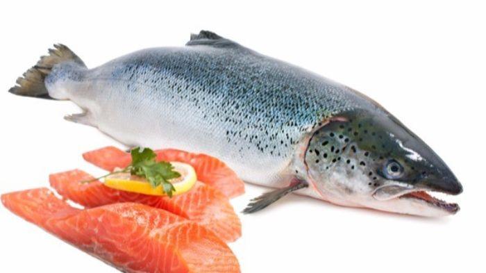 Salmon sinh sống chủ yếu tại Bắc Đại Tây Dương và Thái Bình Dương