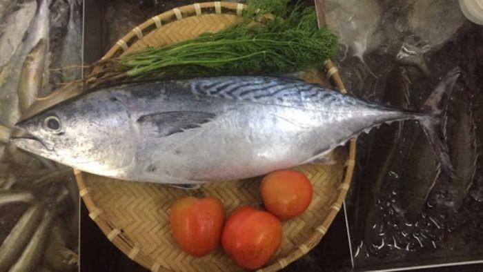 Nguồn hải sản này còn mang đến rất nhiều công dụng cho sức khỏe của các thành viên trong gia đình