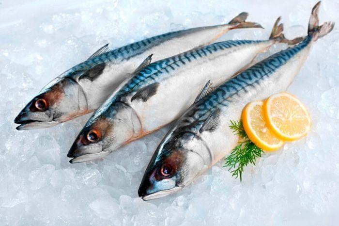 Trong thịt của cá nục chứa nhiều Kali giúp duy trì và ổn định huyết áp