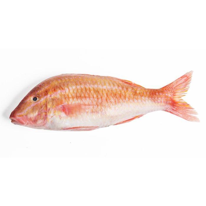 Cá phèn hay còn được biết đến với tên gọi khác là cá thèn