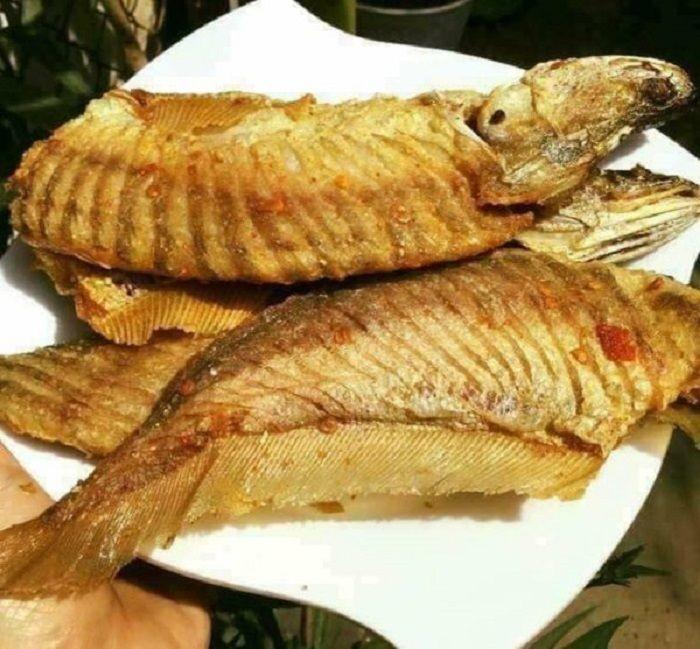 Cá thát lát là loài cá nước ngọt phổ biến được nhiều người yêu thích