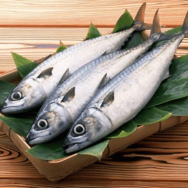 Với giá trị dinh dưỡng vượt trội, loại cá này được lựa chọn nhiều trong bữa ăn của gia đình
