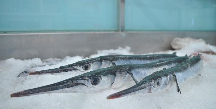 Loại cá này cung cấp hàm lượng vitamin dồi dào giúp tăng cường thể chất