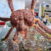 Cua Hoang De Alaska King Crab