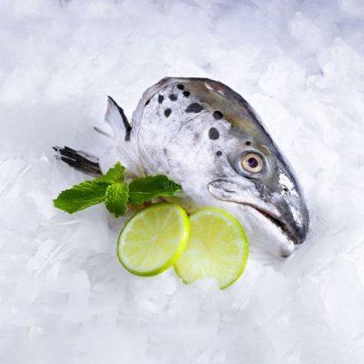 Cá hồi mang đến nhiều lợi ích nổi bật cho cơ thể nhưng bạn tuyệt đối không nên ăn quá nhiều