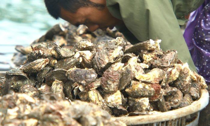 Trong 100g thịt loại hải sản nàycó chứa rất nhiều vitamin và khoáng chất