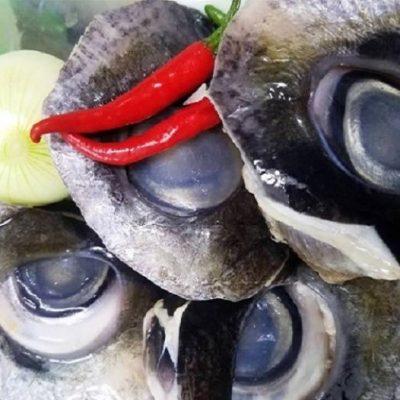 """Mắt cá ngừ đại dương được ví như """"đèn pha của biển cả"""""""