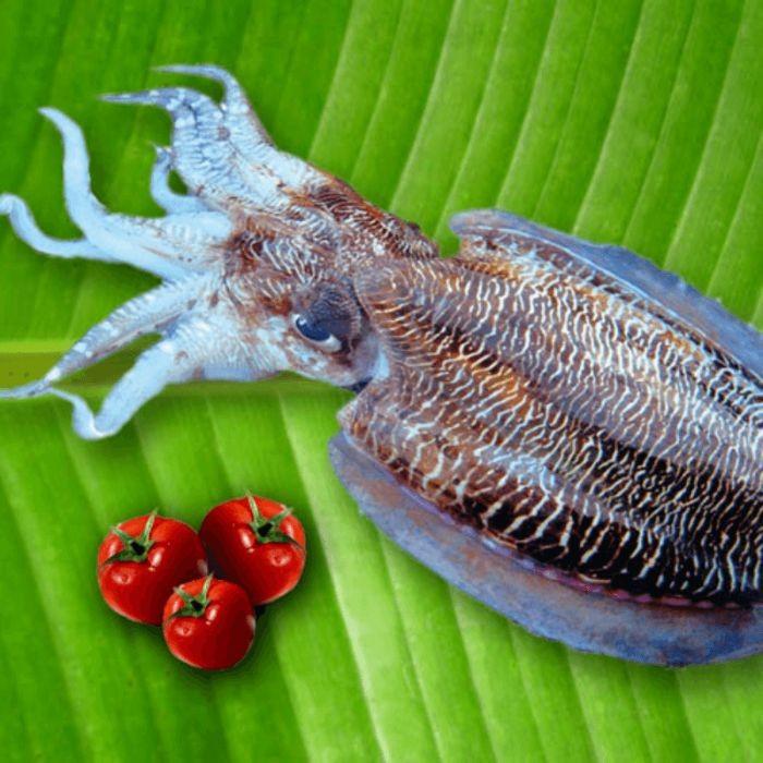 Đây còn là loại hải sản có hàm lượng dinh dưỡng cao