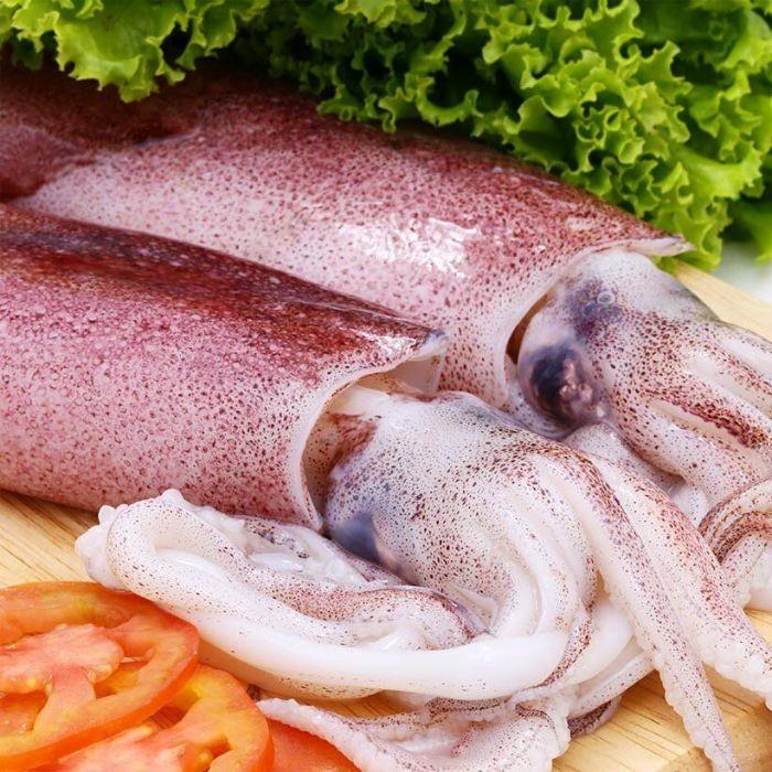 Mực là thực phẩm mang đến nhiều công dụng cho sức khỏe người sử dụng