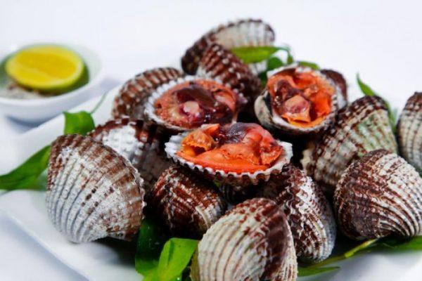Sò huyết có chứa hàm lượng dinh dưỡng cao hơn rất nhiều so với thịt, cá và một số loại hải sản khác