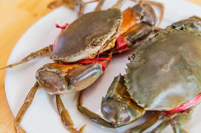 Cua biển là nguyên liệu chính của món súp cua biển