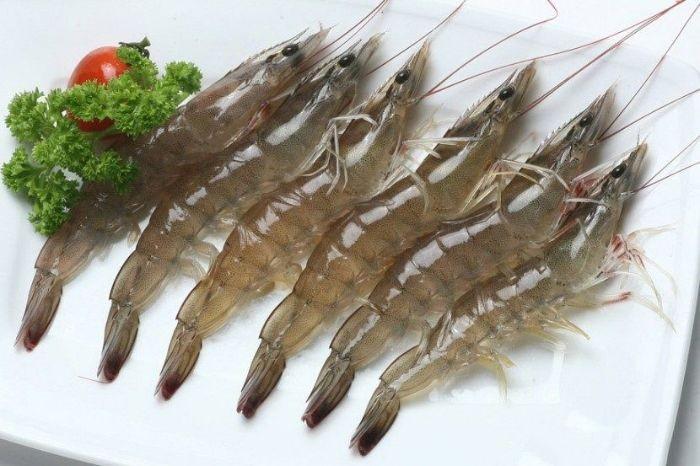 Hải Sản Trung Nam là đơn vị chuyên cung cấp các sản phẩm hải sản uy tín